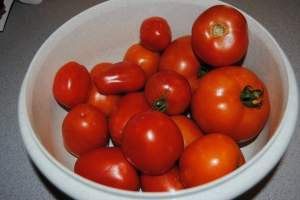 There is nothing better than a vine ripened, fresh picked tomato!!  Yummy!!!!!