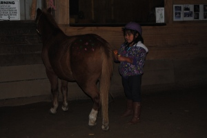 Lili getting her pony, Cooper, decorated with paint.