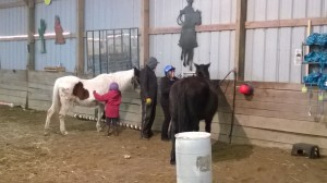 Lili and me brushing our horses.  Lili is brushing Shatan and I'm brushing Oprah.