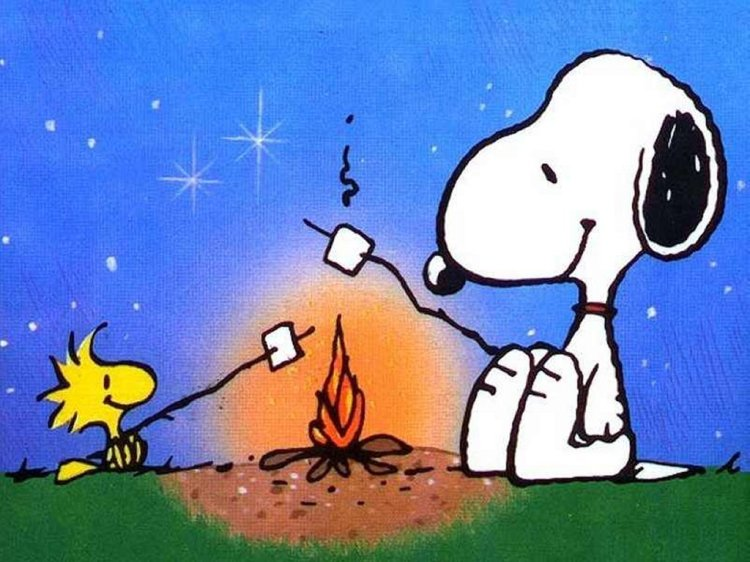 snoopy-camping[1]