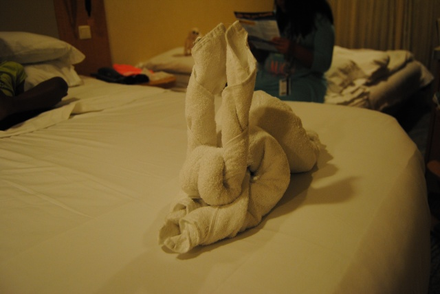 Okay, I am a bit obsessed with the towel origami.